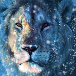 Narnia by Sm00th-Cr1m1nal