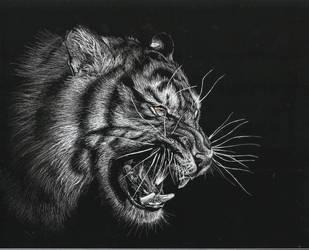 moody tiger by kotyatka