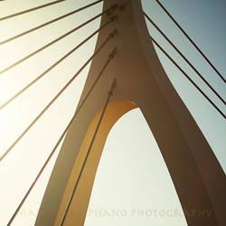 a bridge to the sky by morettina
