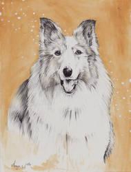 A cute Doggy by Listenes