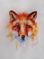 Fox by Foxytragic