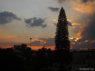 10.01.2014 - Grey sunset by cherrynahme