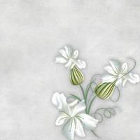 Floral SB Paper 04 by CntryGurl-Designs