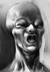 Grey Photobomb by ISignRob