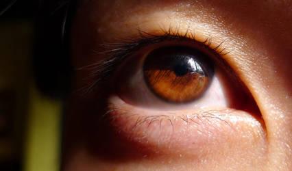Aye eye by rslewisphotos