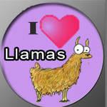 Llama Luve by Me2Smart4U
