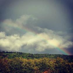 Rainbow by Before-I-Sleep
