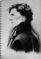 The consulting detective by Skiofit