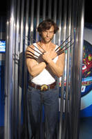 Wolverine at Mme Tussauds by MysteriousMaemi