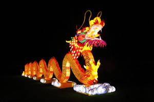 Golden Dragon by MysteriousMaemi