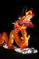 Golden Dragon 2 by MysteriousMaemi