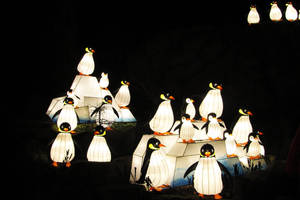 Pinguins by MysteriousMaemi