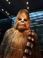 Chewbacca by MysteriousMaemi