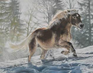 Winter/horse by Djudjicka97