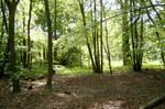Woodland 2 by ravenscar45