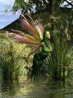 Dragonflies by ravenscar45