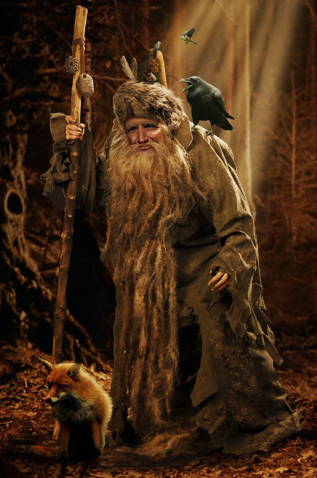 Woodland Wizard by ravenscar45