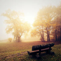 Breathe in... by Al-Baum