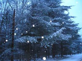 Snowy Snowy Night 2 by slyvenom