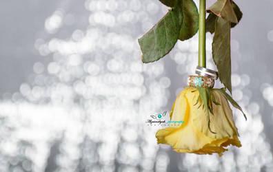 ring by ALZAINABYAH