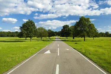 The Road - paweldomaradzki by Nikonist