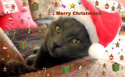 Merry Christmas by Biljana1313