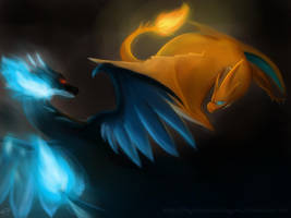 Charizard X vs Y by NightCrystalDragon