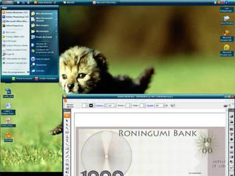 My Desktop by roningumi