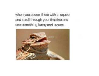 memes by adamswondergarden