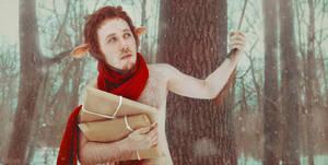 Mr. Tumnus (The Chronicles of Narnia) by KatyaWarped