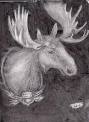 Moose by Ewwwa