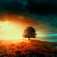 tree 5 by BaxiaArt
