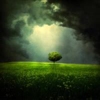 tree .. by BaxiaArt