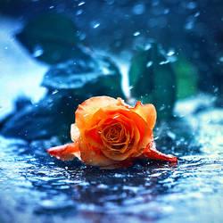 rain II by BaxiaArt