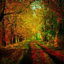 Autumn III by BaxiaArt