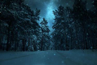 Winter Night II by BaxiaArt