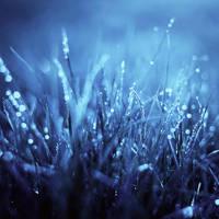 Blue Dreams by BaxiaArt