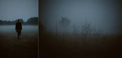 Mist by BaxiaArt