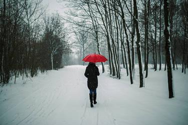Winter Walk by BaxiaArt