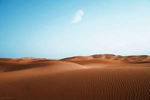 Desert by GnAkK