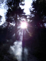 Smoke by xTaNdTx