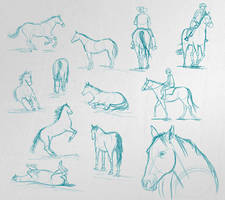 horse pose study - speed sketches by michalmotyka