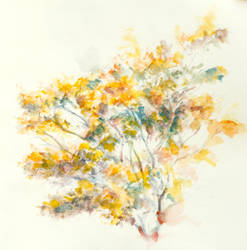 yellow tree by hat0017