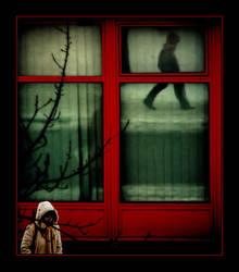 Red window by gonzofoto