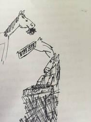 cavalo's  by luisastehmann