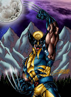 WOLVERINE Color by VAXION