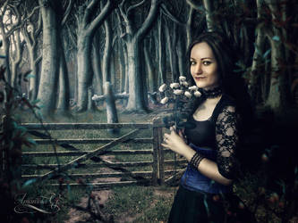 Black widow by Amaranta-G