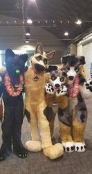 Califur 2017! by PuppyFeathers