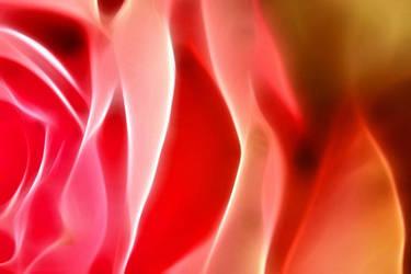 A Pink Beauty II by VampBea