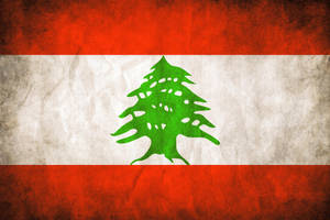 Lebanese Grungy Flag by think0